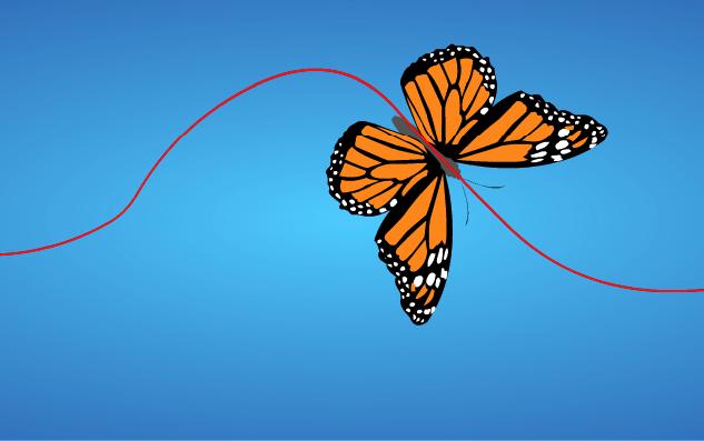 Fun Vector Butterfly Flash Animation – snorkl tv